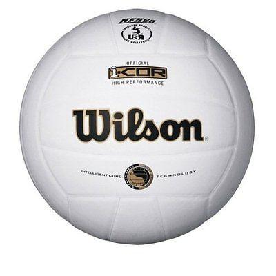 Wilson Indoor Leather Game Ball